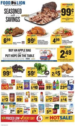 Catalogue Food Lion from 09/15/2021